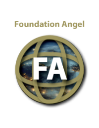 systemic-reform-movement-foundation-angel
